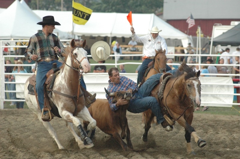 Steer Wrestling at the Ellicottville Championship Rodeo